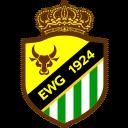 エルチェ BVのエンブレム画像